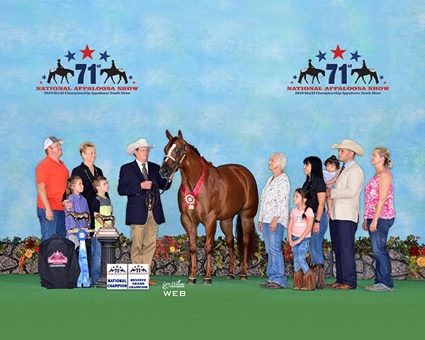 Lovelace - 2 year old mare NP winner