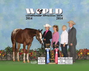 2014 World - Sarah Williams