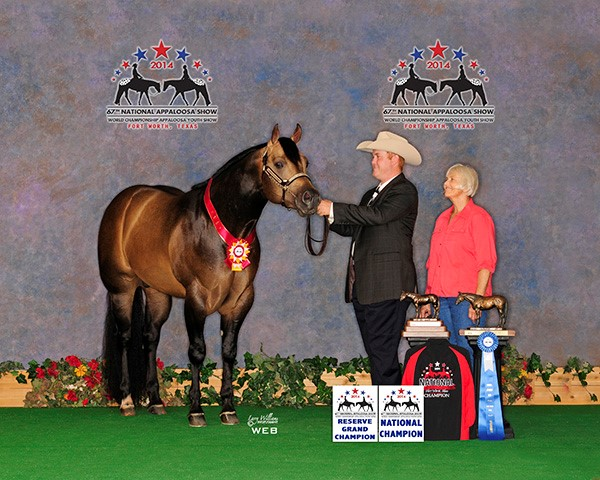 2014 National - Lovelace (RG) 2