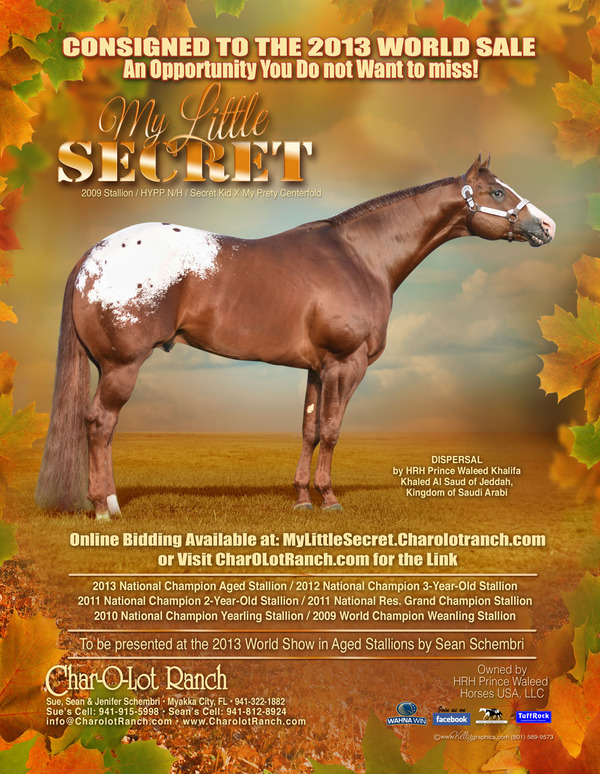 APHC Journal Nov 2013 Sale Ad 2