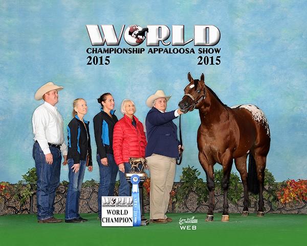Zimmerman WC Yearling NP Stallion