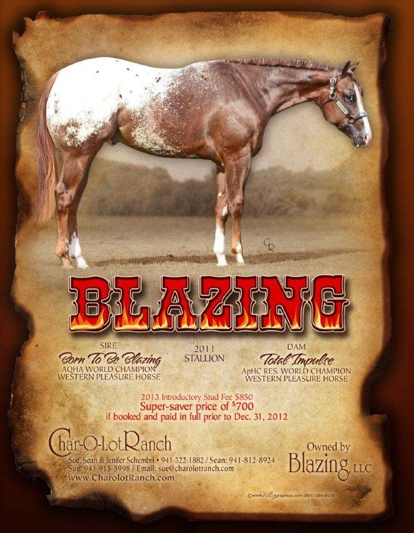 APHC Journal Dec 2012 Blazing 2