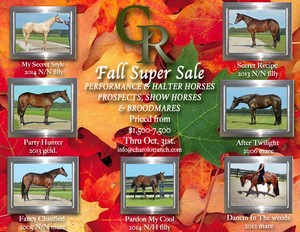 Fall Super Saver